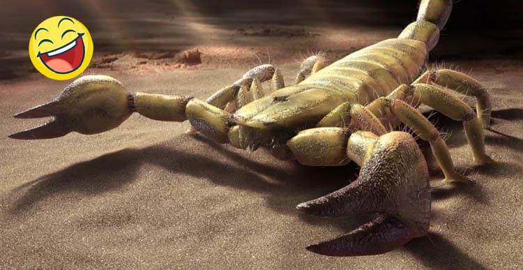 10 причин, почему Скорпион – лучший знак Зодиака.